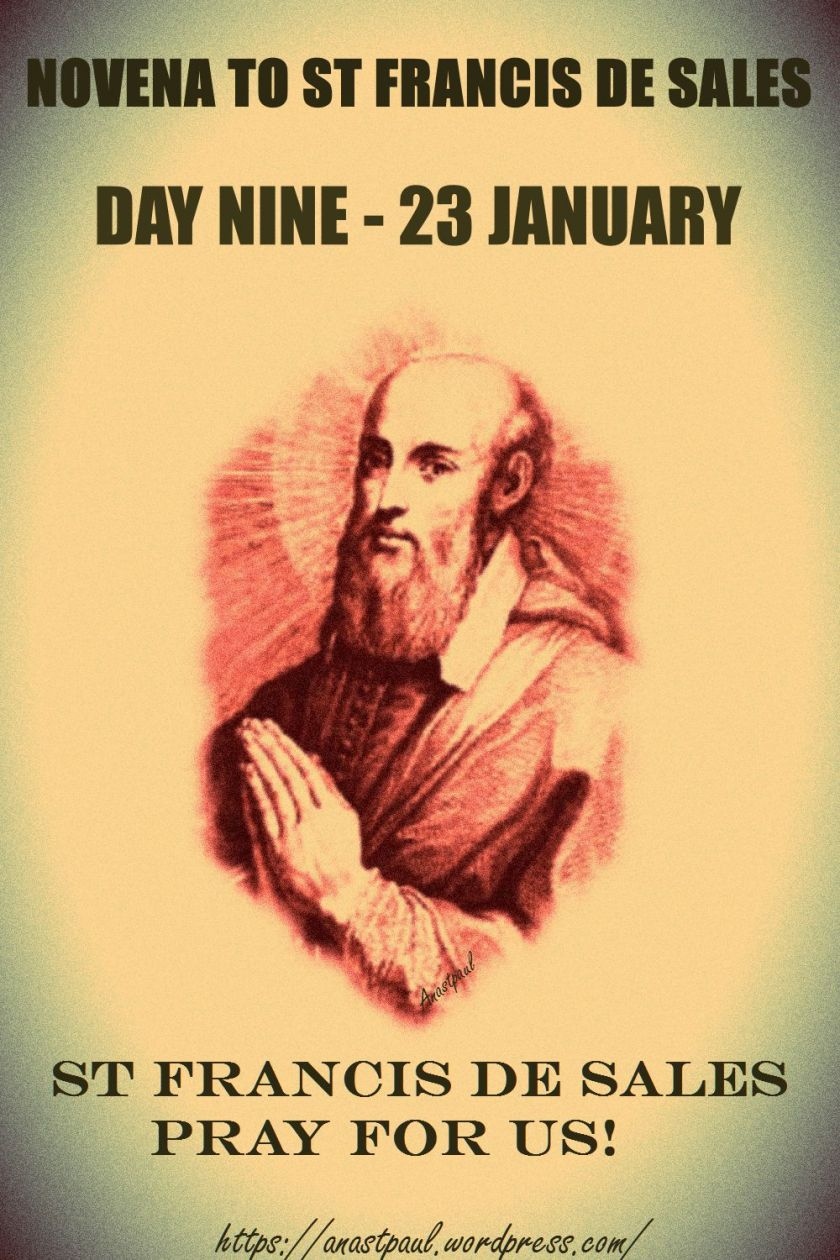 day-9-st-francisdesales