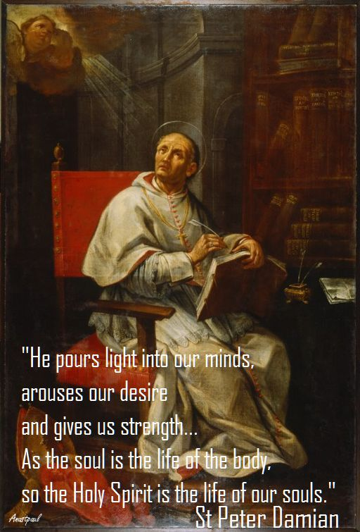he-pours-light-into-our-minds-st-peter-damian
