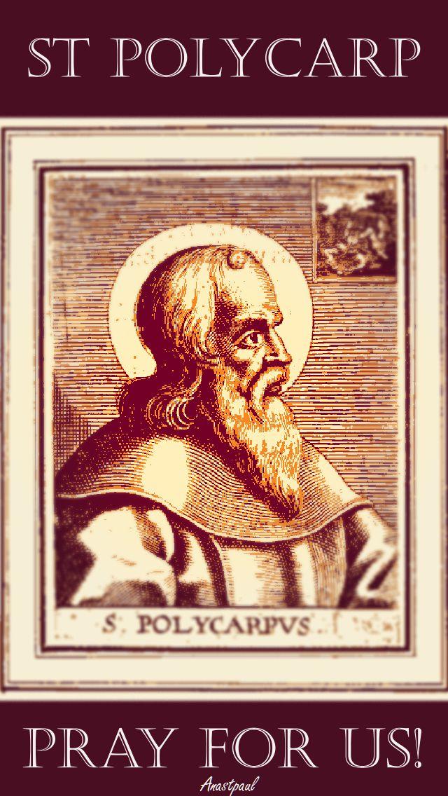 st-polycarp-pray-for-us