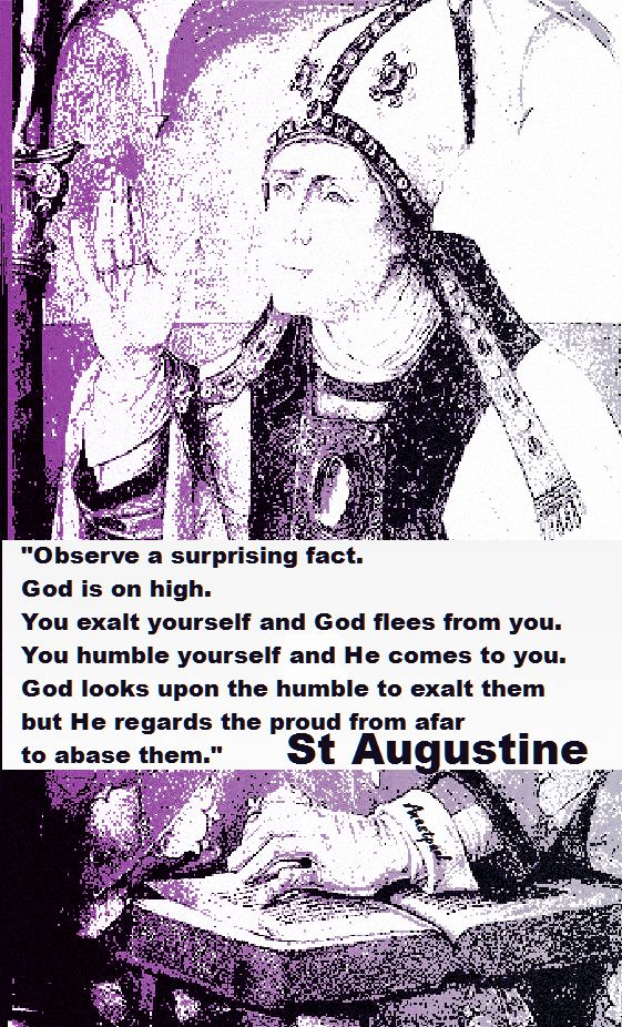 OBSERVE A SURPRISING FACT-STAUGUSTINE
