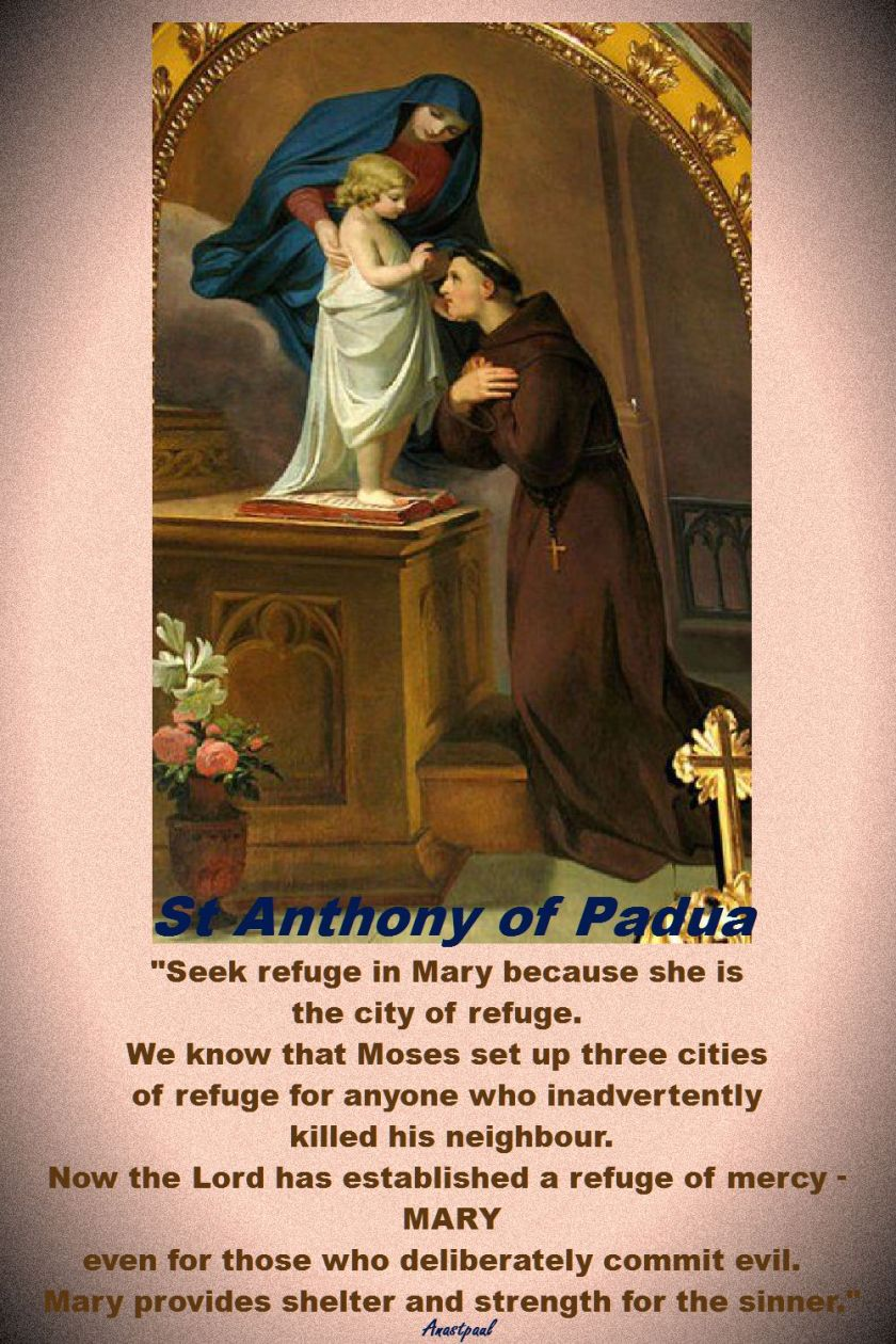 seek refuge in mary - st anthony of padua