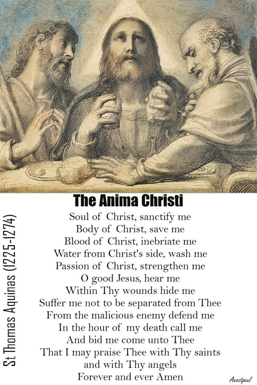 THE ANIMA CHRISTI - ST THOMAS AQUINAS
