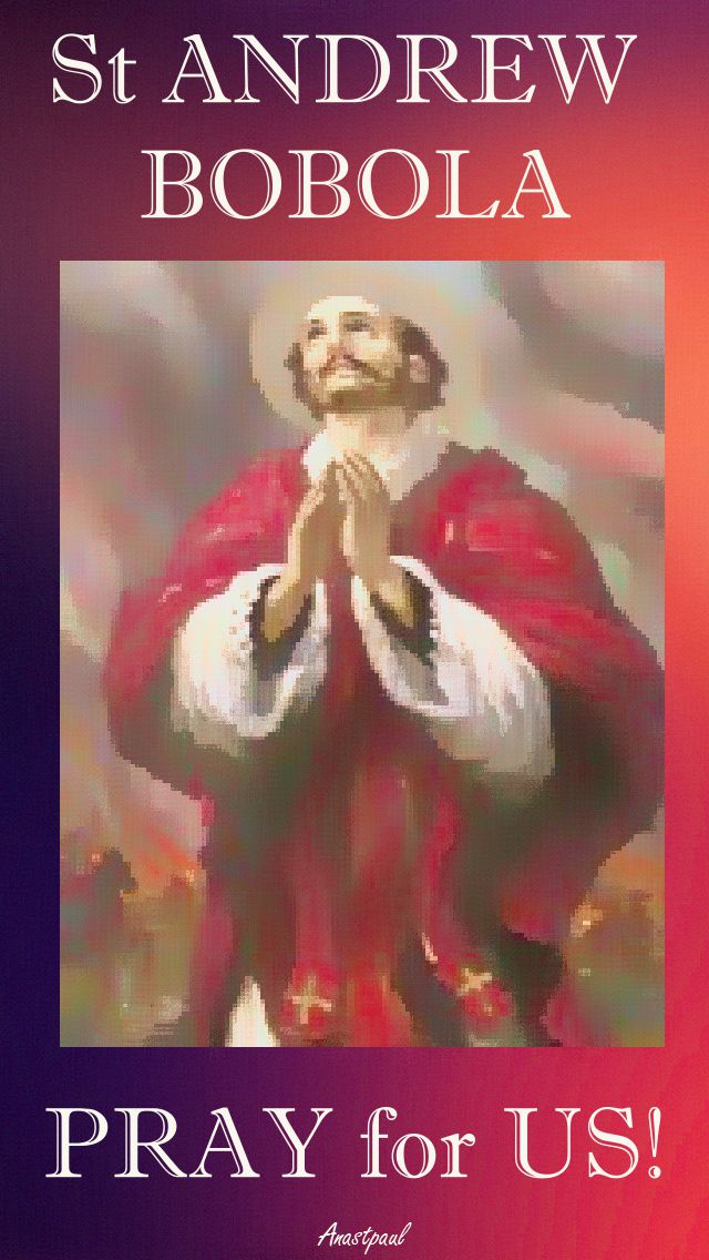 st andrew bobola pray for us