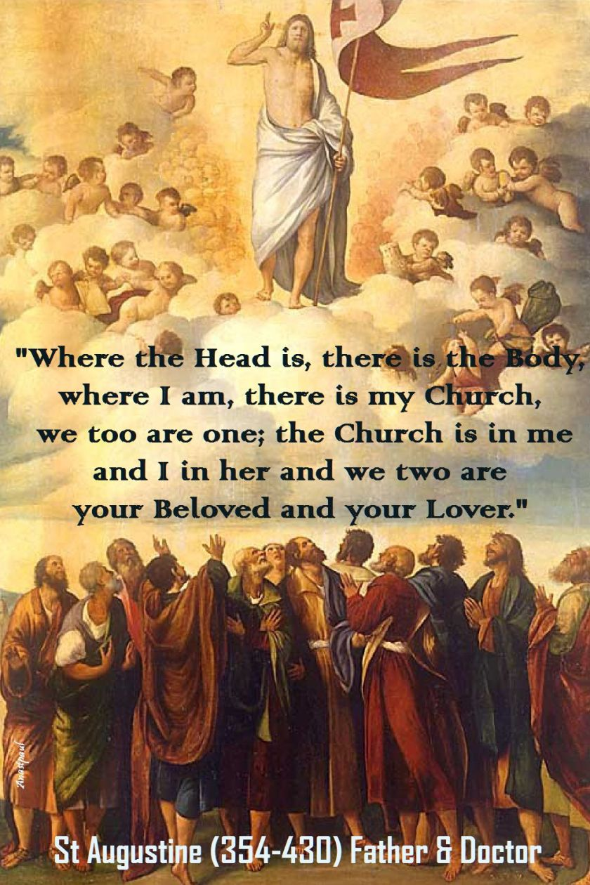 where the head is-st augustine
