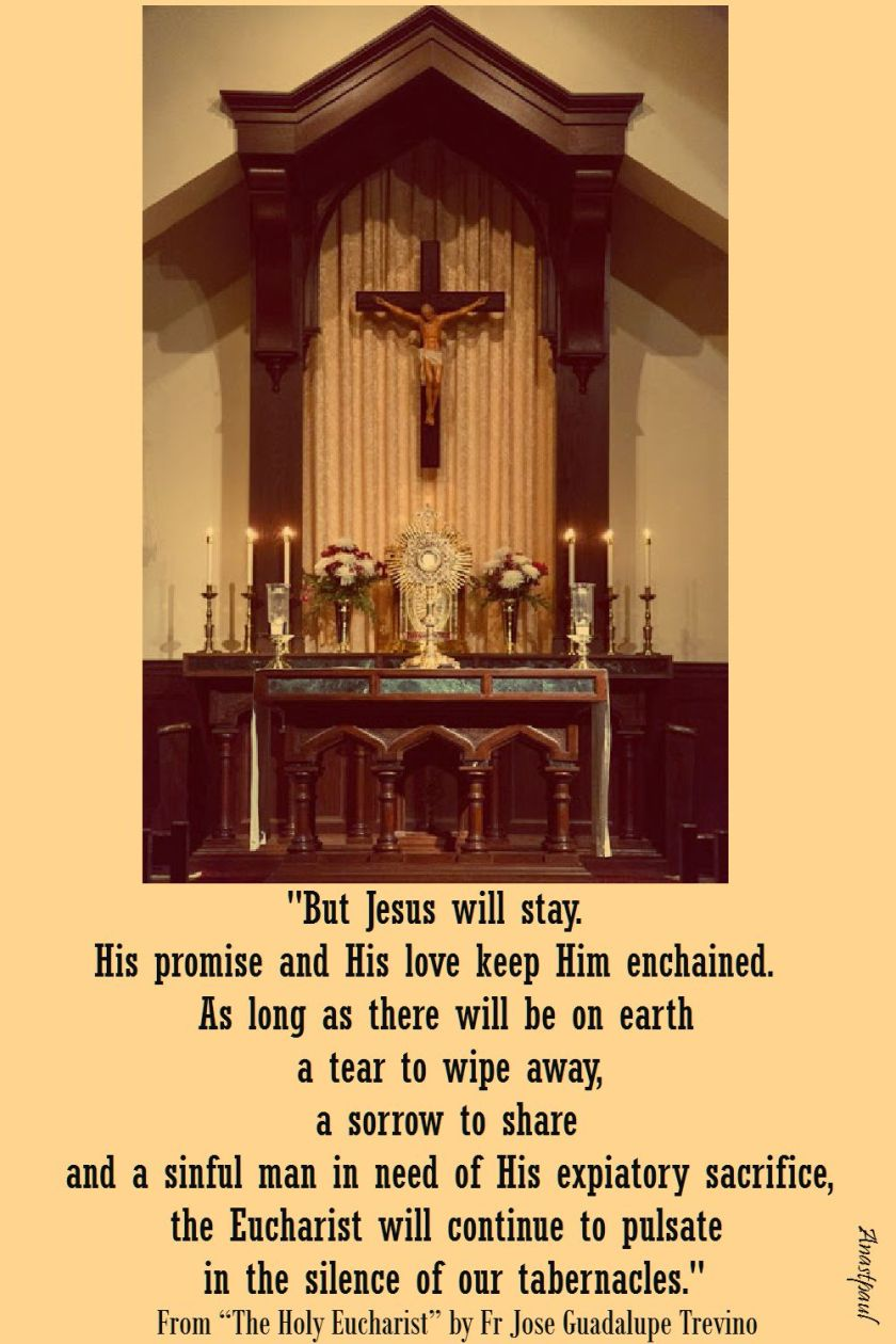 but jesus will stay - fr jose guadalupe trevino - the holy eucharist