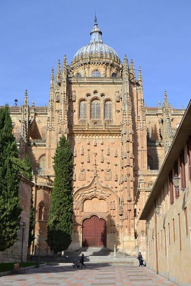 Catedral_de_Salamanca_(31856660826)