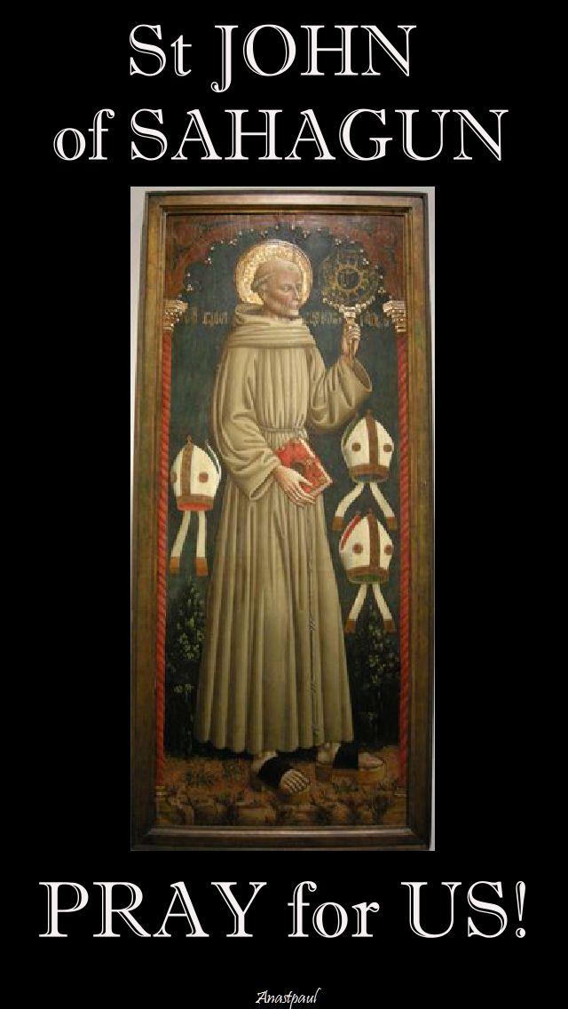 ST JOHN OF SAHAGUN PRAY FOR US