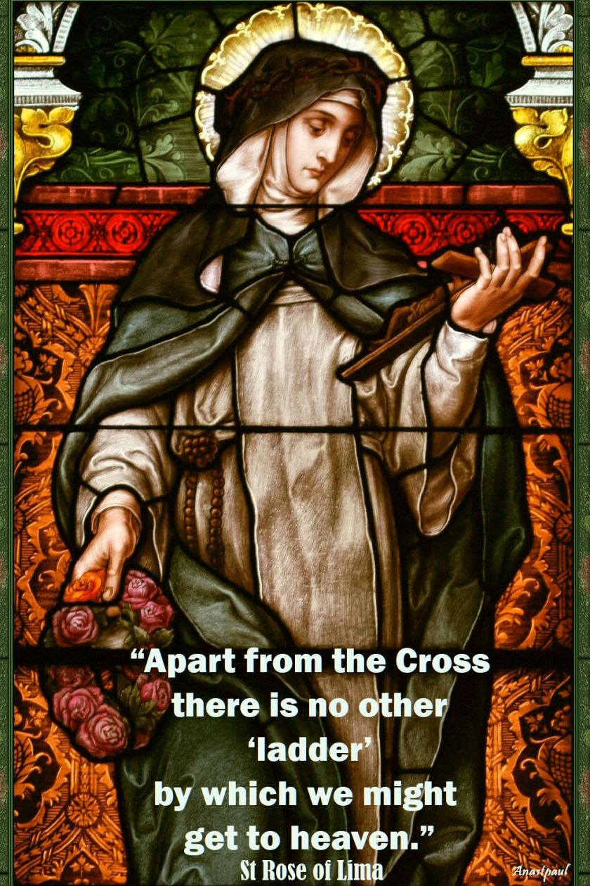 apart from the cross - st rose of lima