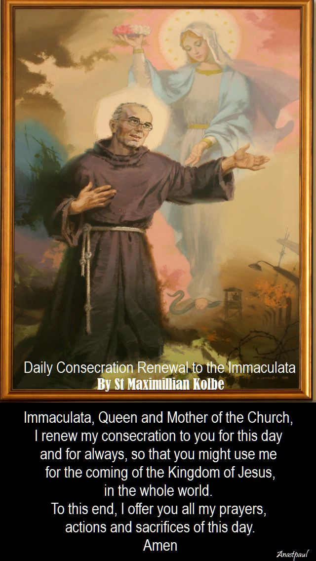 daily consecration renewal to the immaculata by st maximillian kolbe