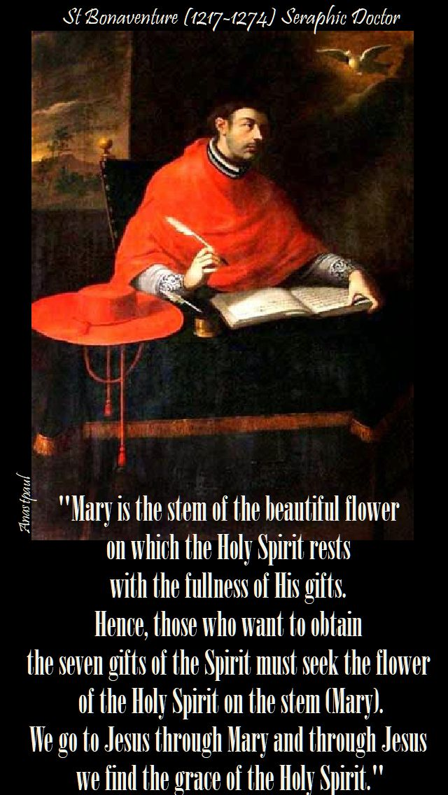 mary is the stem - st bonaventure