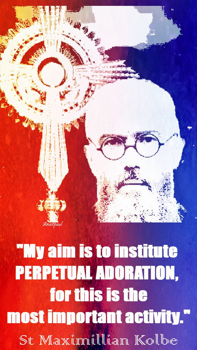 my aim is to institute - st maximillian kolbe