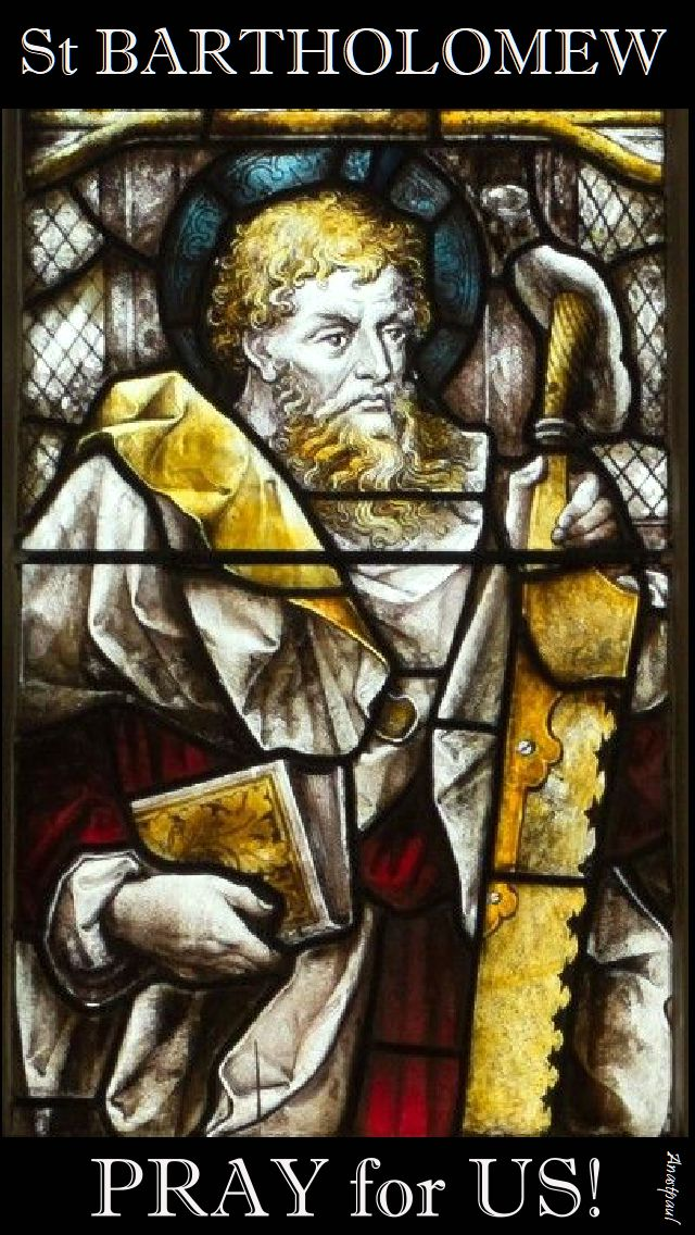 st bartholomew pray for us 2