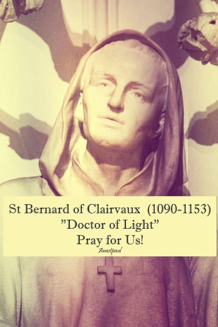 st bernard - doctor of light