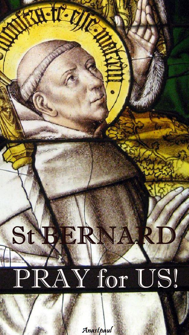 st bernard pray for us