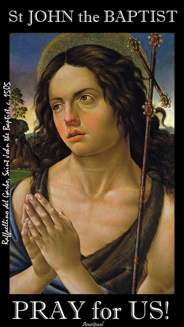st john the baptist pray for us 2