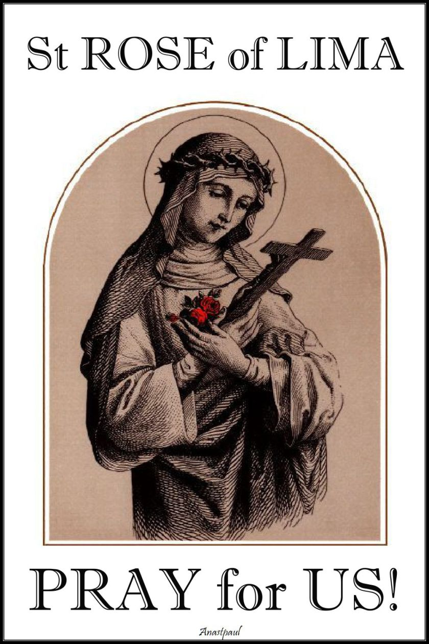 st rose of lima - pray for us 2