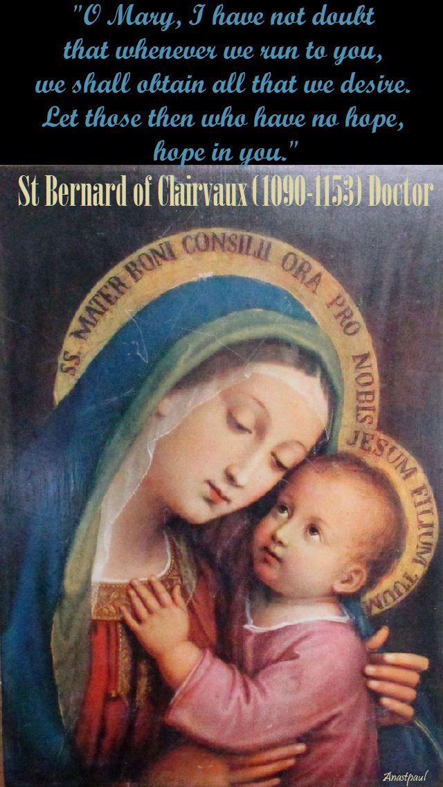 o mary i have not doubt - st bernard