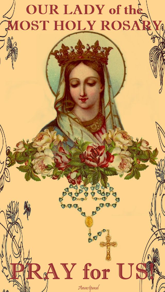 our lady of the rosary pray for us 2017