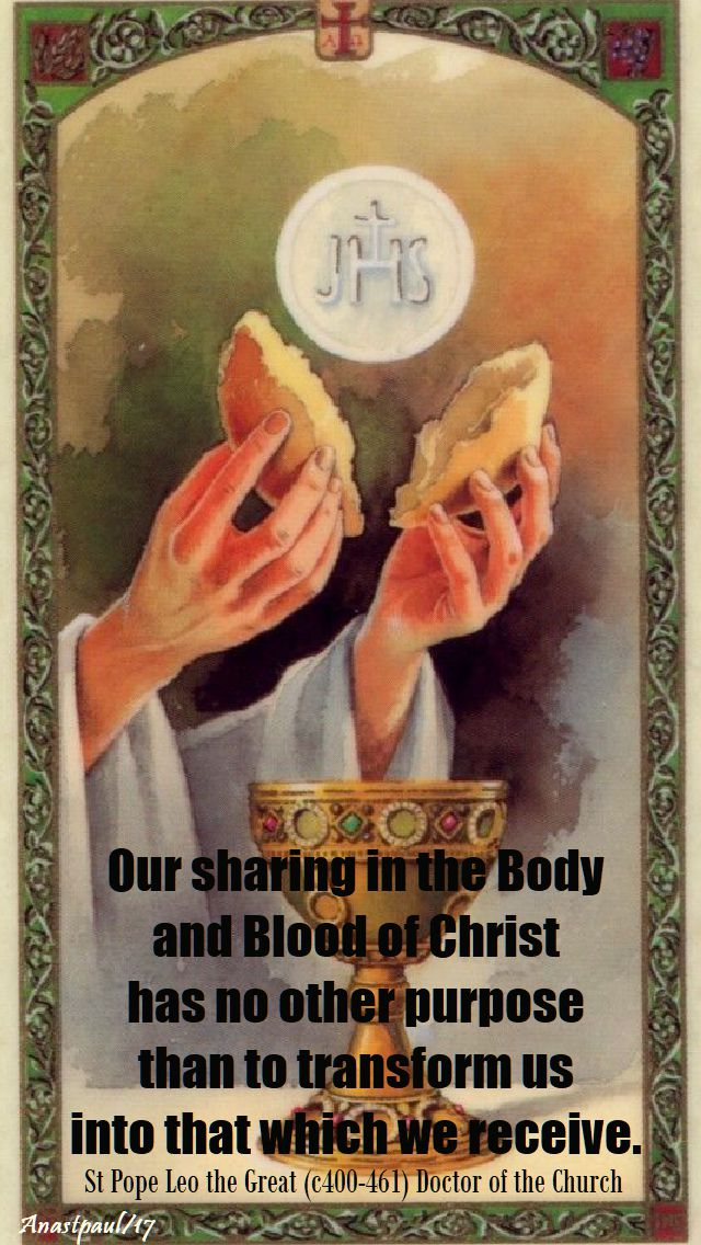 our sharing in the body - st leo - 10 nov 2017