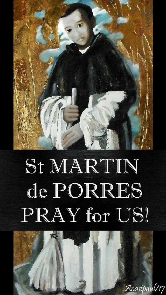 st martin pray for us - 3 nov 2017