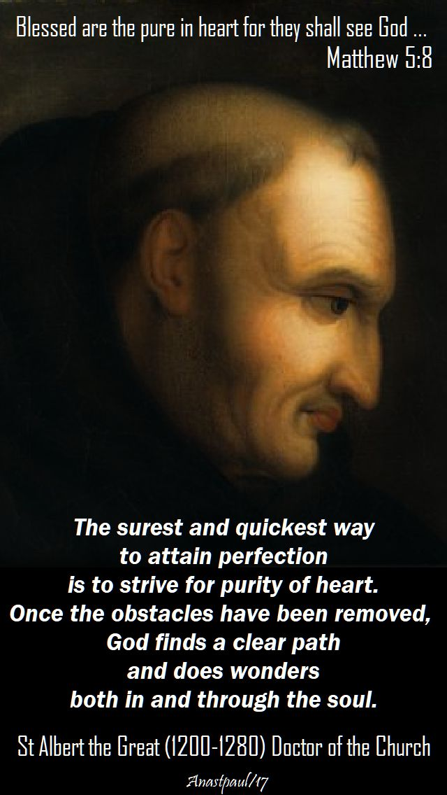 the surest and quickest way - st albert the great - 15 nov 2017