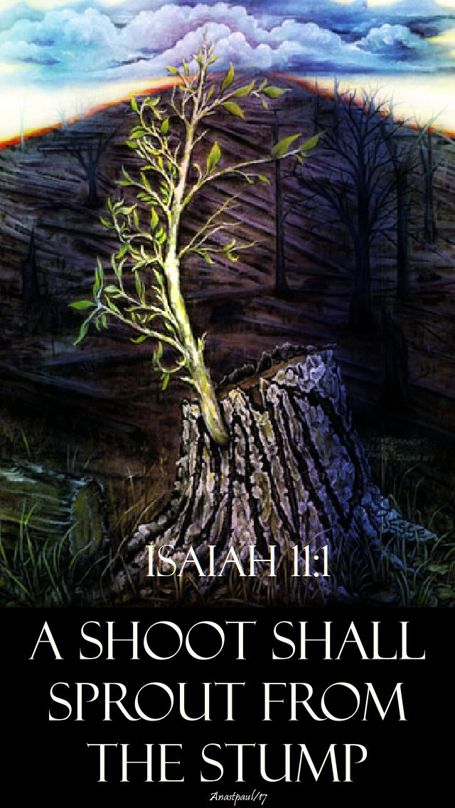isaIAH 11 1