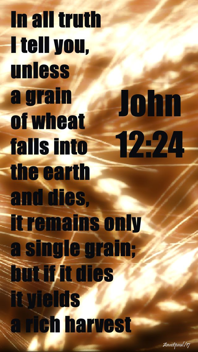 john 12 - 24
