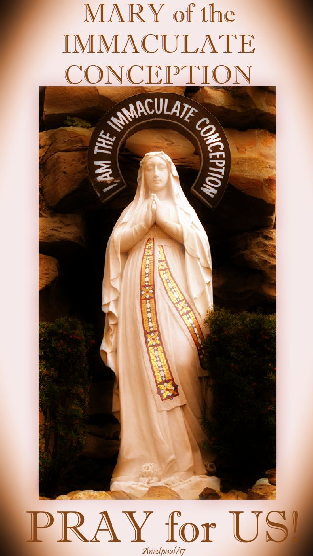 mary of the immaculate conception pray for us