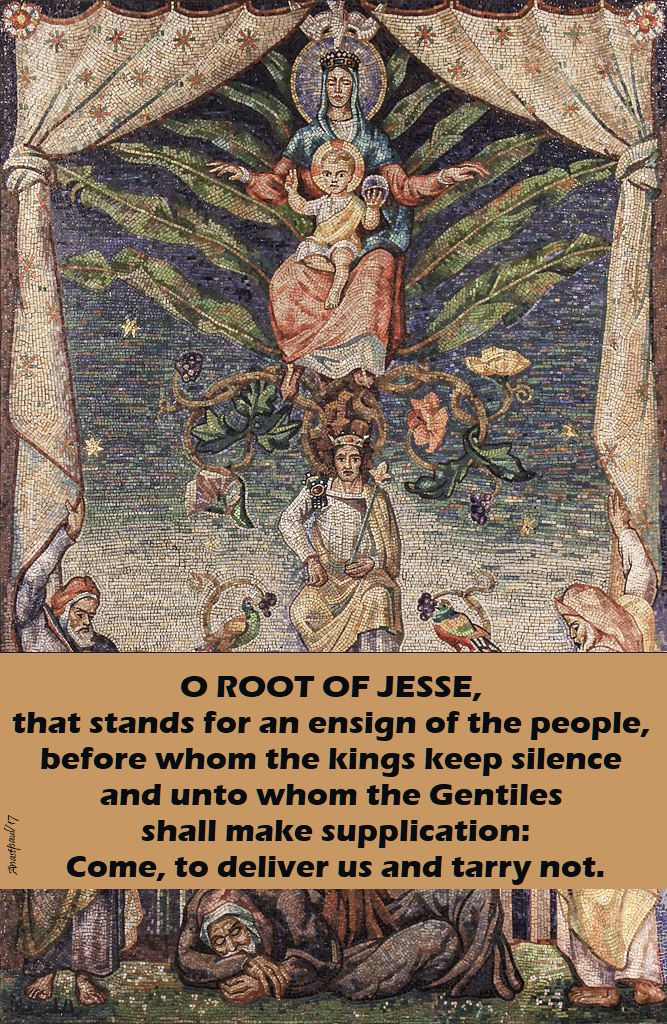o root of jesse - 19 dec 2017.jpg