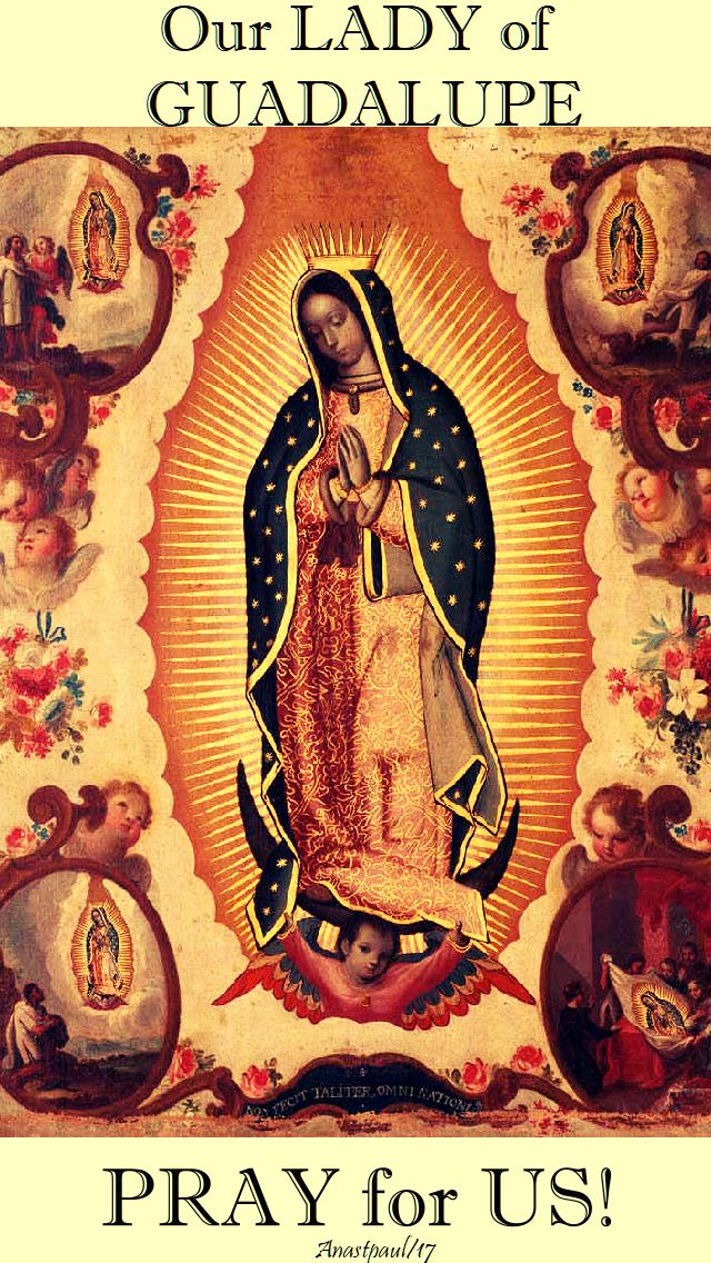 our lady of guadalupe pray for us - 12 dec 2017