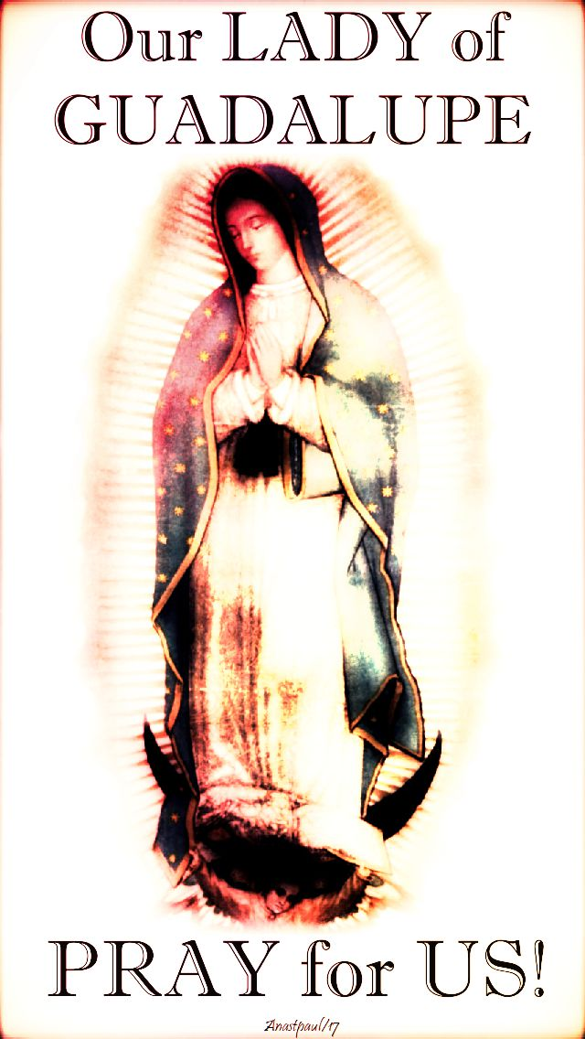 our lady of guadalupe pray for us no 2 - 12 dec 2017