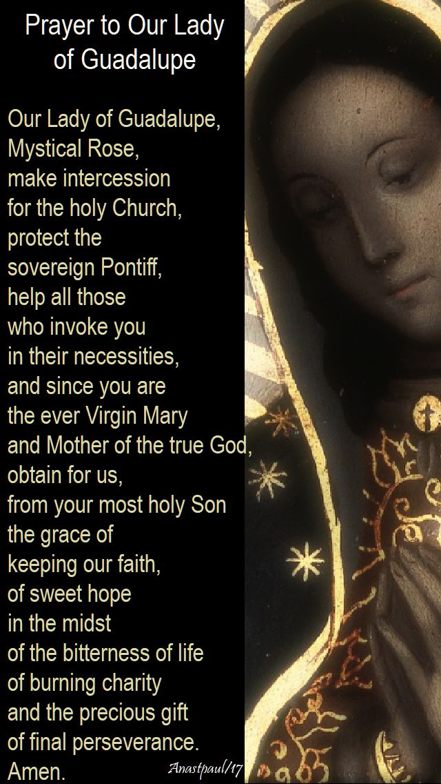 prayer to our lady of guadalupe - 12 dec 2017