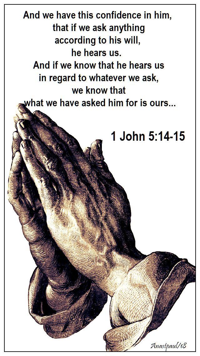 1 john 5 - 14 15