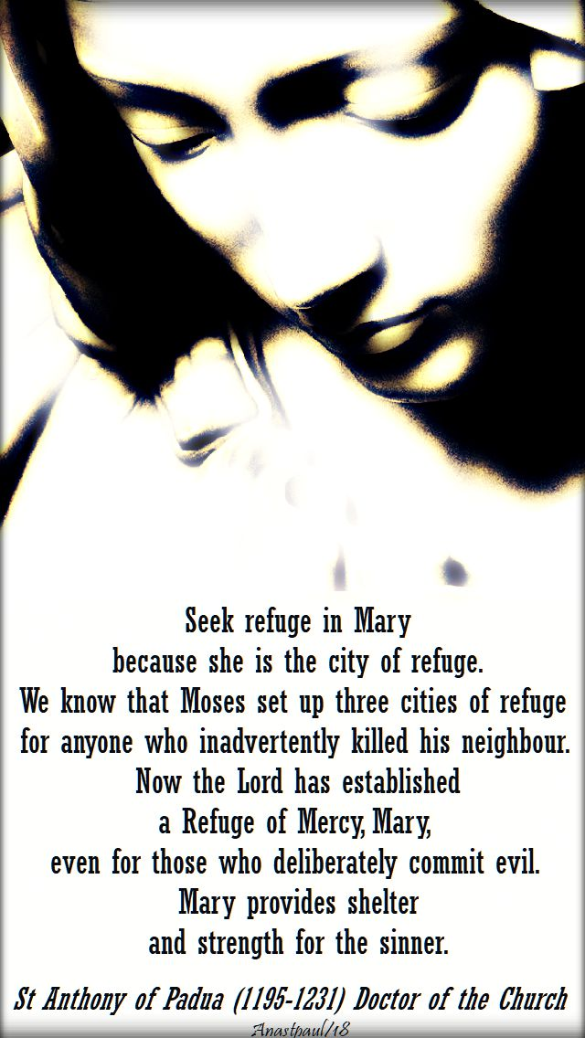 seek refuge in mary - st anthony - 15 jan 2018