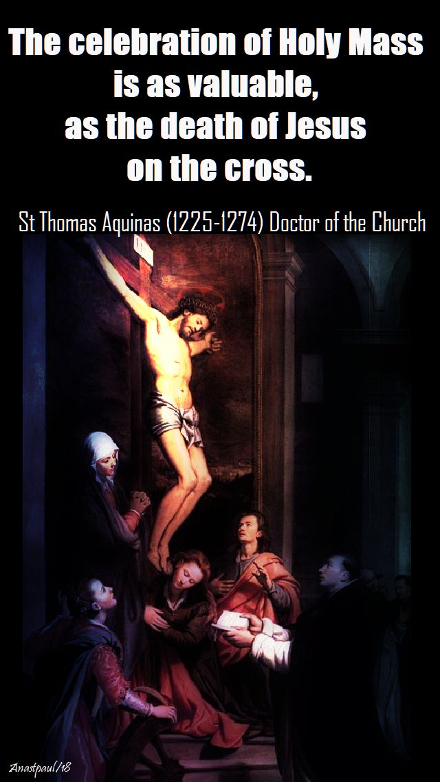 the celebration of holy mass - st thomas aquinas - 28 jan 2018