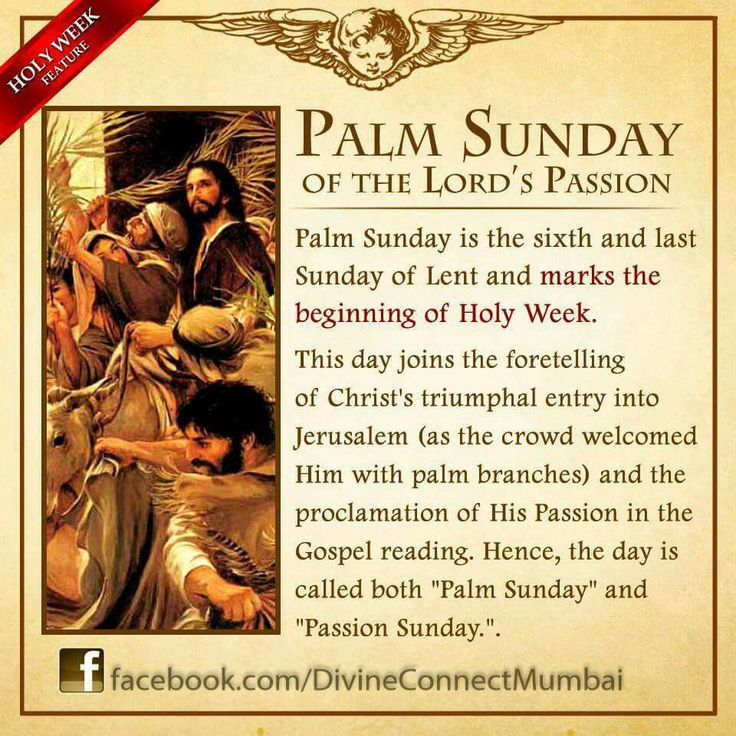 palm sunday.info