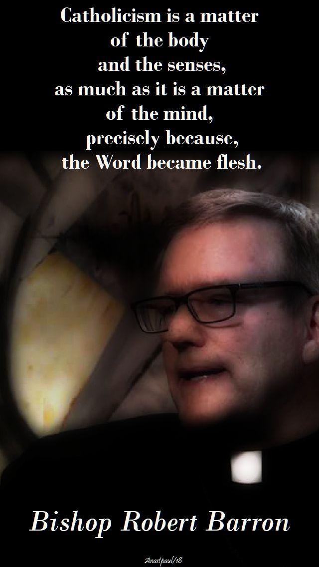 catholicism is a matter - bishop barron - 25 april 2018