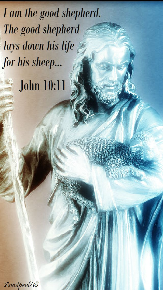 john 10 11 - the good shepherd