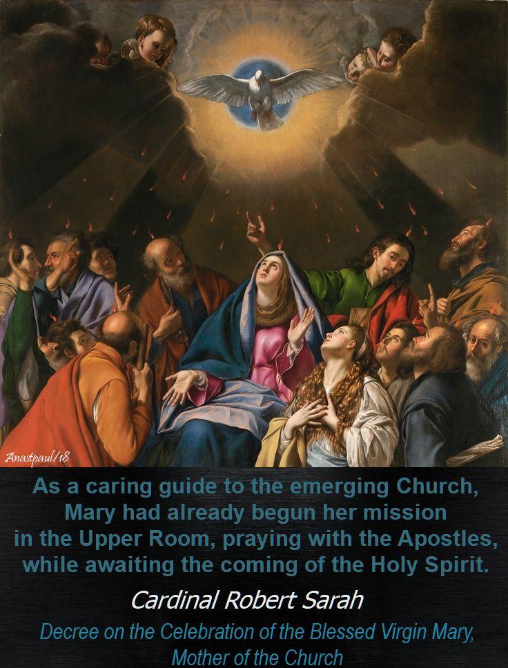 as a caring guide to the emerging church - cardinal sarah - 21 may 2018