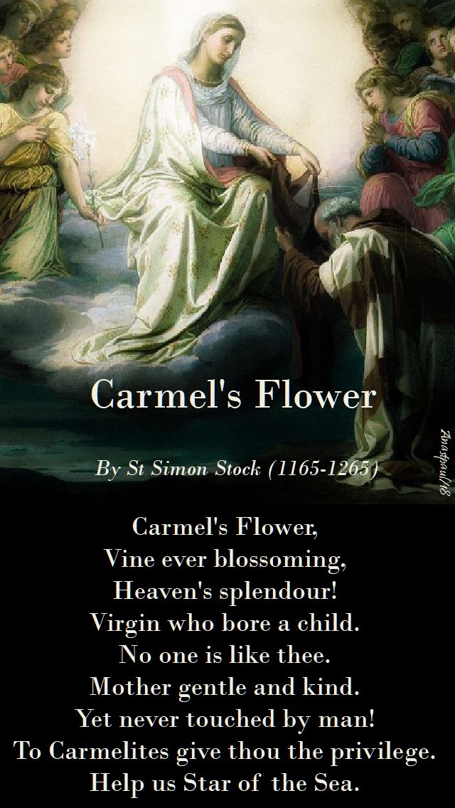 carmel's flower - st simon stock - 16 may 2018