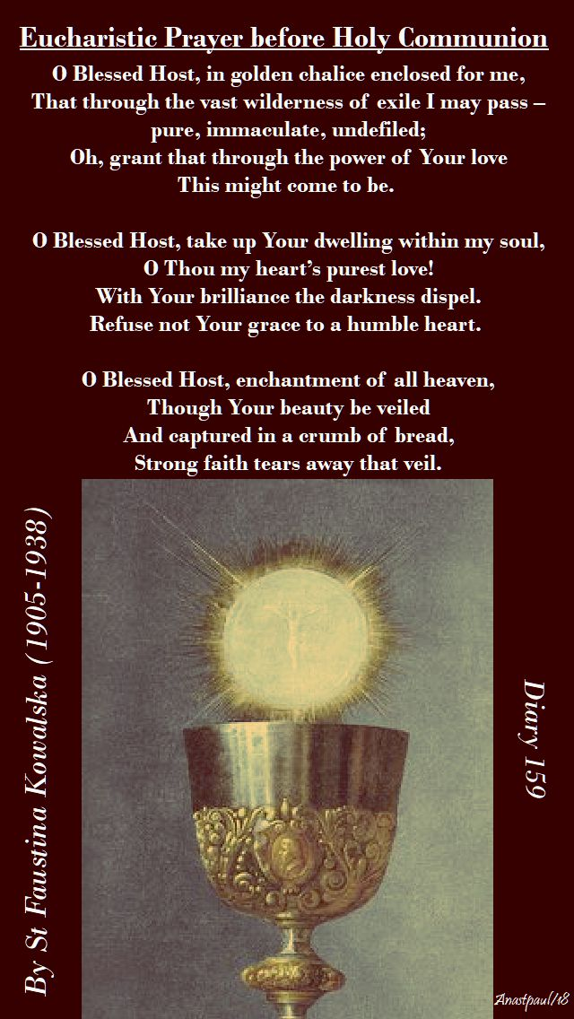 eucharistic prayer before holy comm - st faustina - o blessed host - 13 may 2018 - sunday reflection.jpg