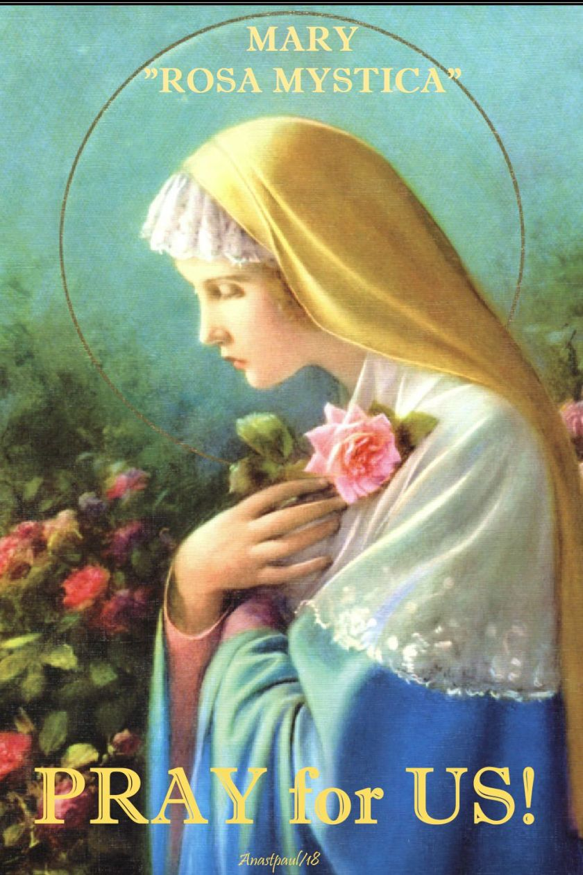 mary - rosa mystica - pray for us - 8 may 2018