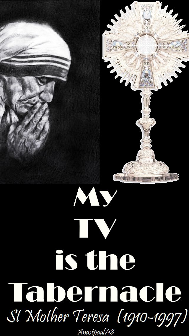 my tv is the tabernacle - st mother teresa - 12 may 2018