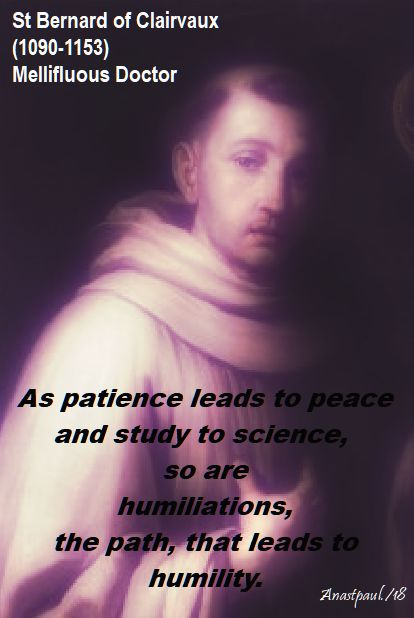 as patience leads to peace - st bernard - 20 june 2018