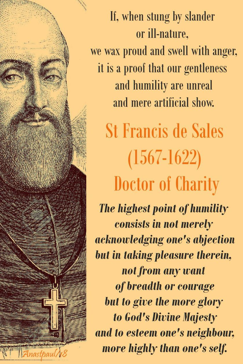 if when stung by slander - the highest point of humility - st francis de sales - 20 june 2018