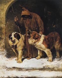 st._bernard_dog__public_domain_