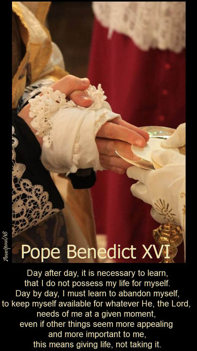 day after day it is necessary to learn - pope benedict on the priesthood - 18 july 2018