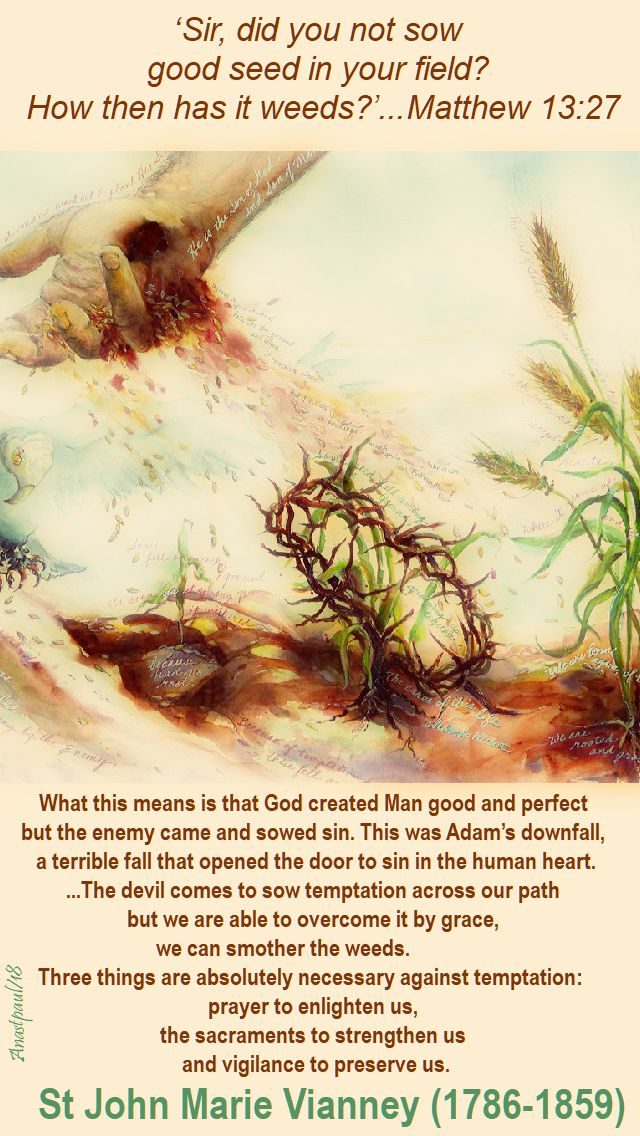 good seed and weeds - matthew 13 27 - what this means is that god - st john vianney - 28 july 2018