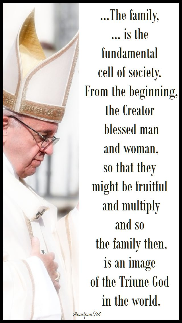 the family is the fundamental - pope francis - 8 july 2018