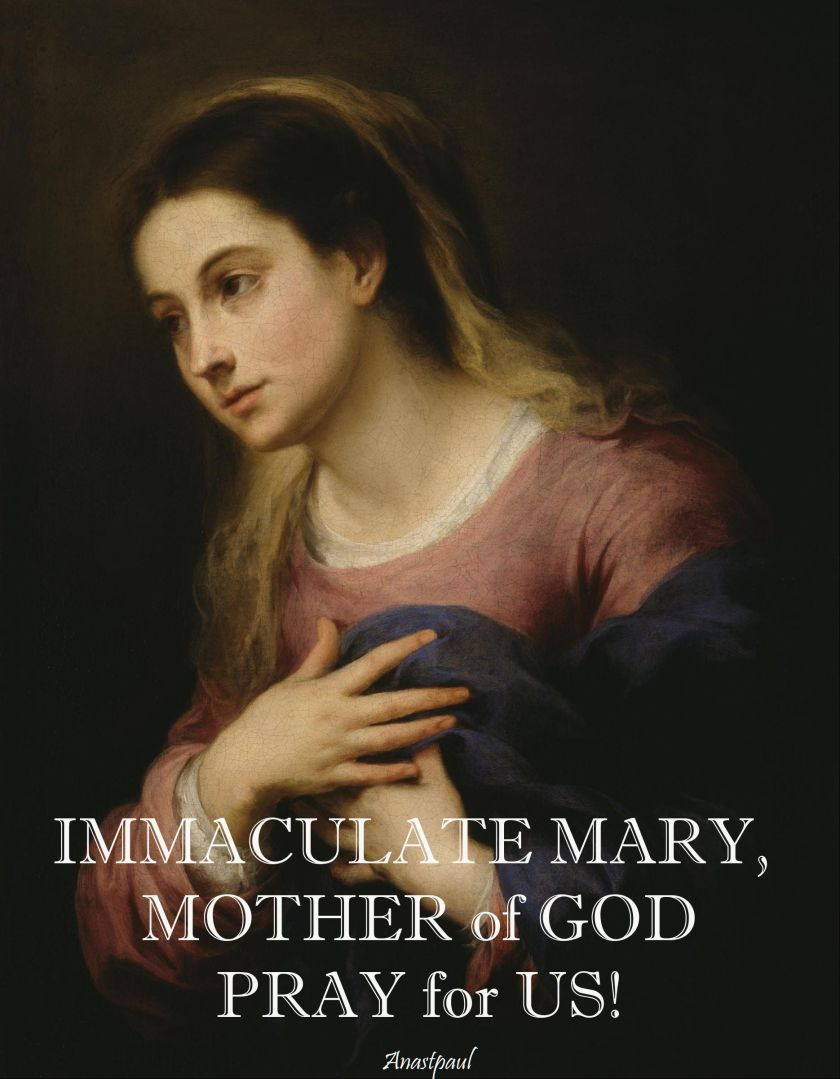 immaculate-mary-pray-for-us-26 aug 2017